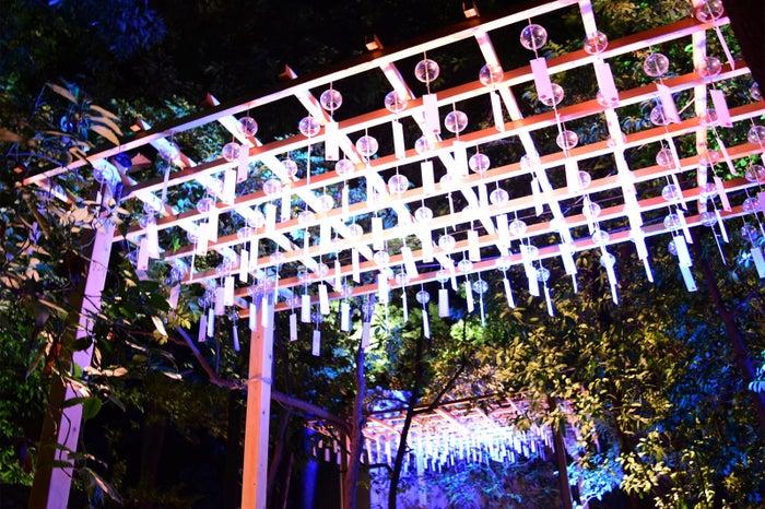 昼は澄んだ美しさ、夜は幻想的な輝き/画像提供:川越氷川神社