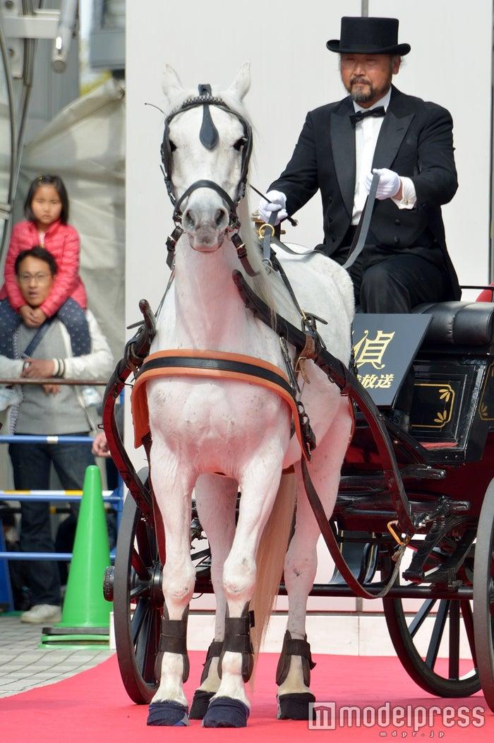 相葉雅紀、馬車に乗って登場(C)モデルプレス