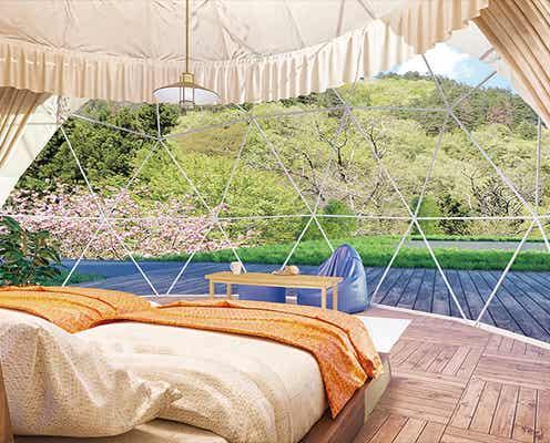 山梨にグランピング施設「ザ フォレスト」森の中のドーム型テントで自然を味わう