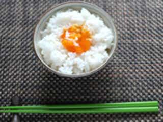 卵かけご飯もシュークリームも…夏は「生卵」に注意
