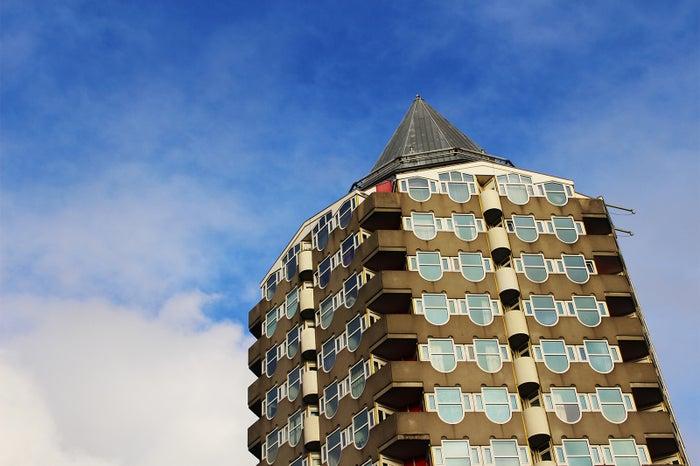 ロッテルダム(提供写真)