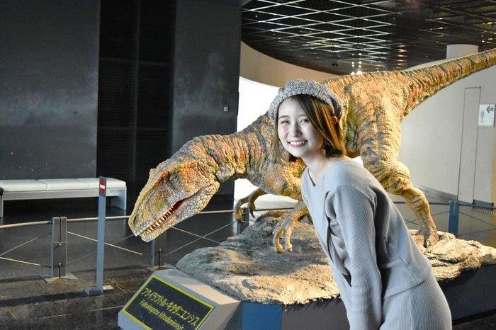 大きさをリアルに感じる骨格標本にドキドキ。こんな大きな生物が福井に生息していたなんて!(C)モデルプレス
