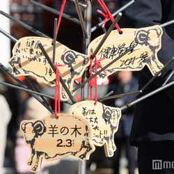錦戸亮主演映画「羊の木」大ヒット祈願イベントより(C)モデルプレス
