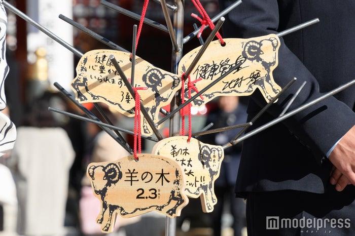 """錦戸亮特製の""""羊の木"""" (C)モデルプレス"""
