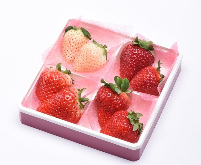 いちご4種食べ比べセット¥2,000/画像提供:株式会社 横浜赤レンガ