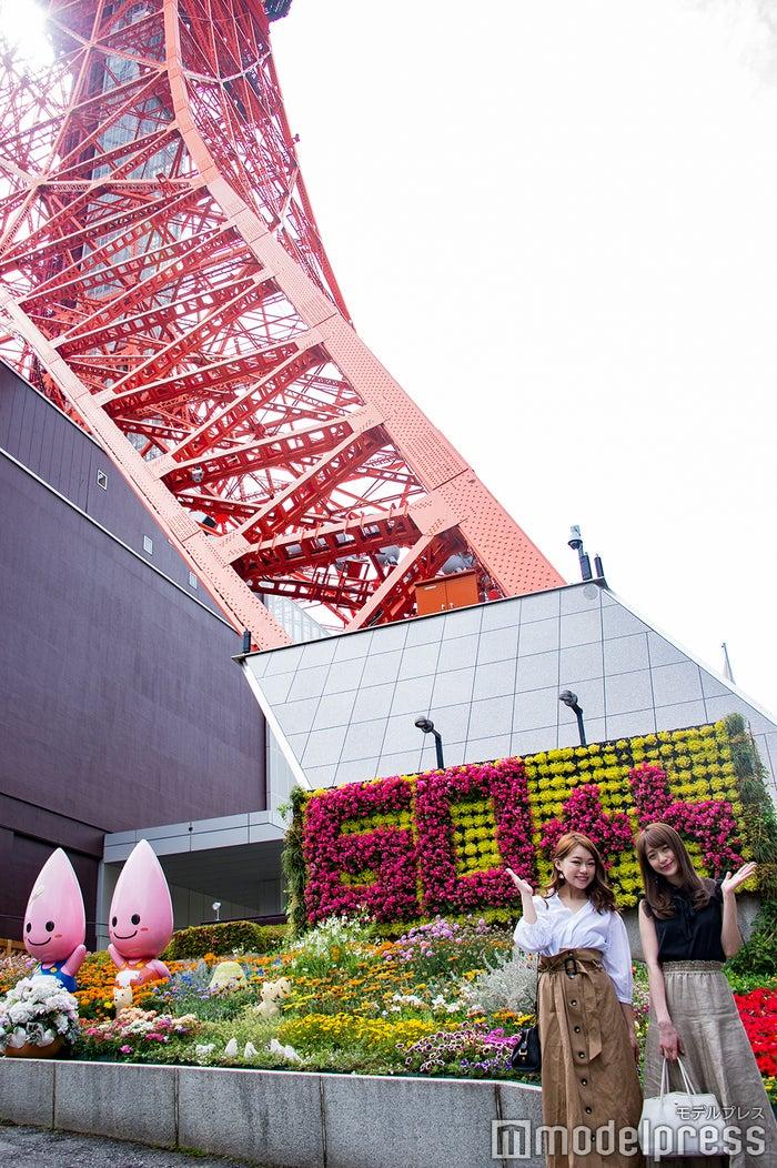 開業60周年の東京タワー(C)モデルプレス