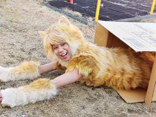 キスマイ北山宏光、お茶目な猫に 衣装のこだわりぶり明らかに<トラさん~僕が猫になったワケ~>