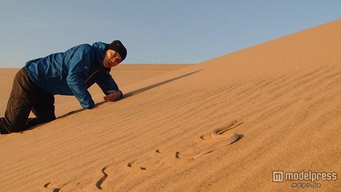 ナミブ砂漠での福山雅治