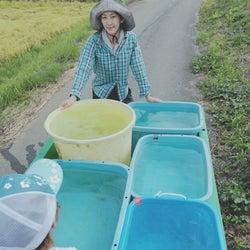 佐藤藍子、停電が続いている自宅の様子を報告「馬、犬、猫など、全ての生き物の為にも」
