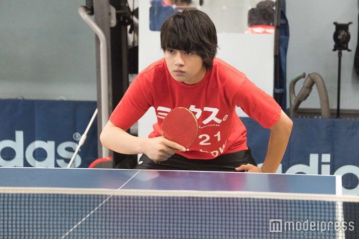 卓球大会出場に向けて練習に励む佐野勇斗(C)モデルプレス