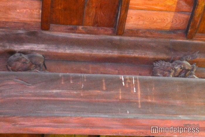 当時の職人が自身の腕前をアピールするため、梁の木材にひっそりと彫られた動物たち(C)モデルプレス