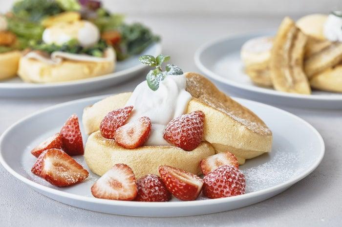 新・奇跡のパンケーキ/画像提供:フレーバーワークス
