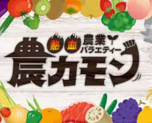 サガテレビで熱血農業バラエティー番組「農カモン」スタート。10/23の初回ゲストはパラシュート部隊