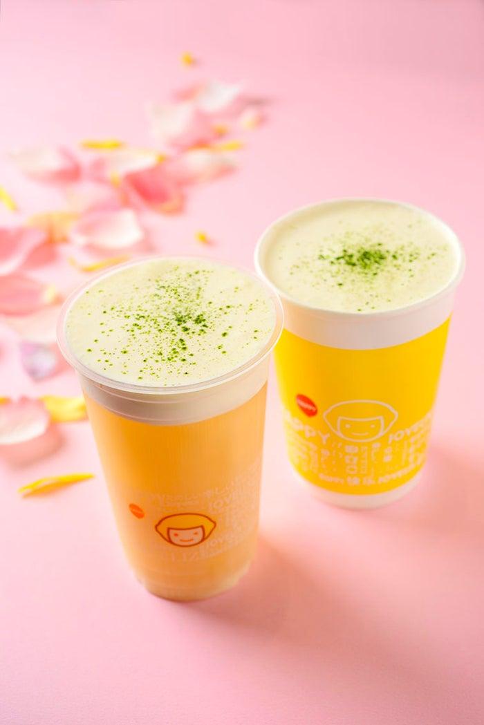 ソルティチーズ四季春茶(東京限定)Mのみ 500円 (提供写真)