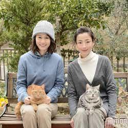 「連続ドラマW グーグーだって猫である2 -good good the fortune cat-」で共演する前田敦子、宮沢りえ(C)WOWOW