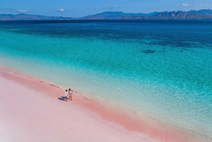 ピンク色の砂浜が広がるピンクビーチ(提供写真)