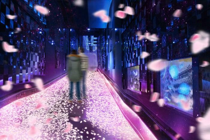 すみだ水族館「桜とクラゲ」の体感型展示、春の雰囲気に包まれる新しい花見/画像提供:オリックス株式会社