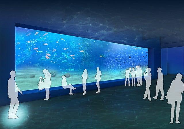 DMMかりゆし水族館/画像提供:DMM.com