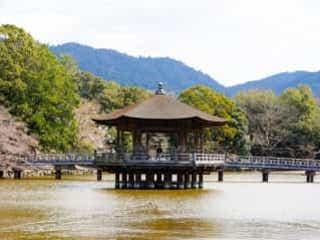 思わず写真を撮りたくなる美しさ…♡ 奈良の穴場スポットをチェック