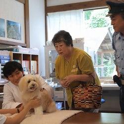 瀧本美織と松田悟志がゲスト出演『駐在刑事』眞島秀和の緊迫シーンも…