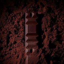 パリのチョコレート専門店「ル・ショコラ・アラン・デュカス」日本初上陸 世界初のイートイン併設