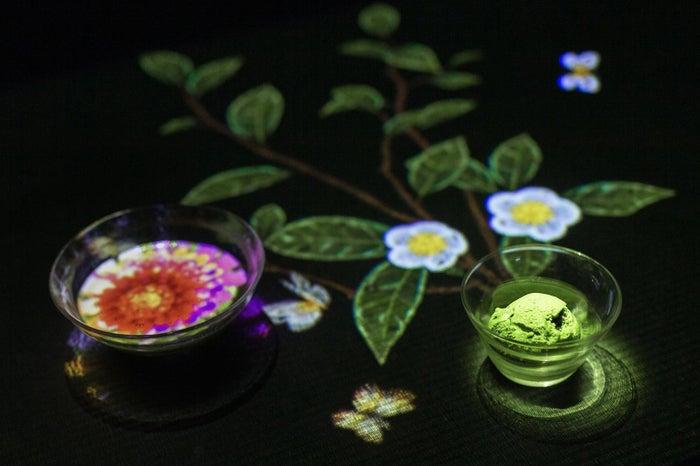 小さきものの中にある無限の宇宙に咲く花々/画像提供:チームラボ