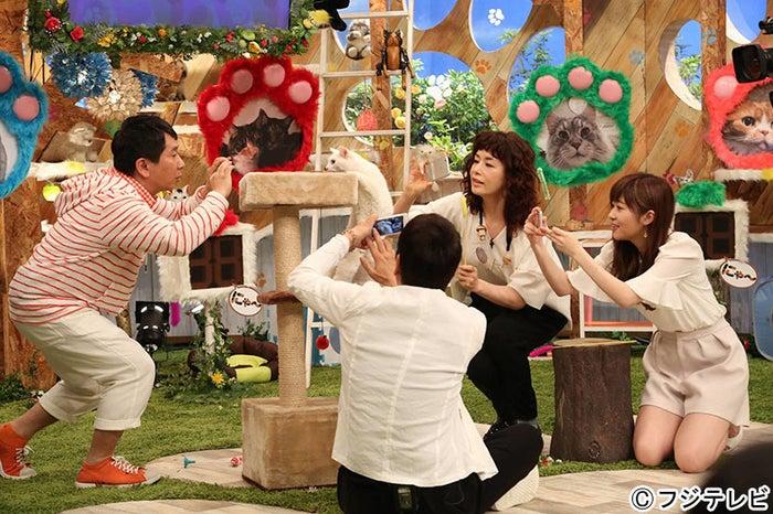 写真撮影中(左から)田中裕二、大杉漣、大地真央、指原莉乃(C)フジテレビ