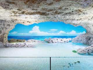 沖縄「DMMかりゆし水族館」動植物約190種展示する全く新しいリゾート空間が誕生