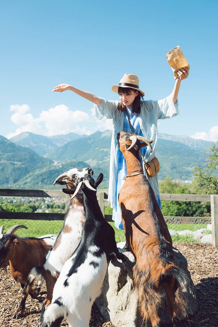 マイエンフェルトにあるハイジの村でヤギに囲まれる井上小百合(撮影:前 康輔/写真提供:光文社)<br>