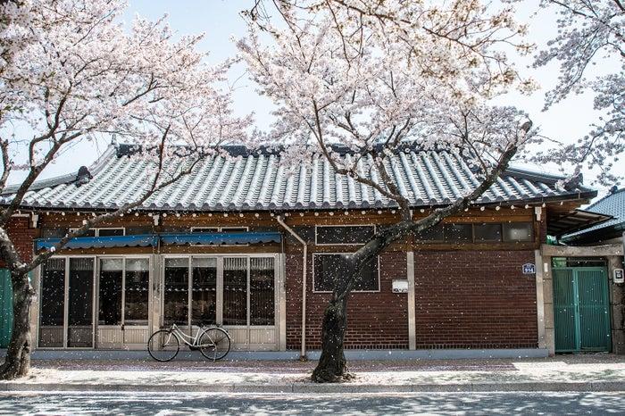 皇理団キル/画像提供:韓国観光公社