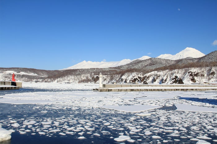 知床の流氷(提供写真)
