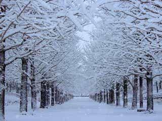 冬になると目力ダウン?!寒さ&乾燥から目元を守る3つのポイント