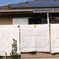 洗濯物も布団も日光に当てるべき」は誤解!?実はデメリットも