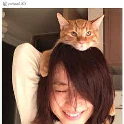 モデルプレス - 石田ゆり子のインスタが癒される 4匹の犬猫と暮らすプライベート「僕はもうどうしたらいいのかわからない」シリーズが可愛すぎ