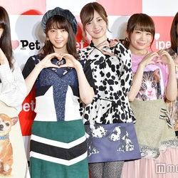 乃木坂46、初の東京ドーム公演&AKB48渡辺麻友卒業について語る