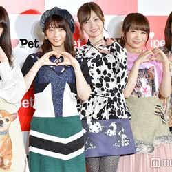モデルプレス - 乃木坂46、初の東京ドーム公演&AKB48渡辺麻友卒業について語る