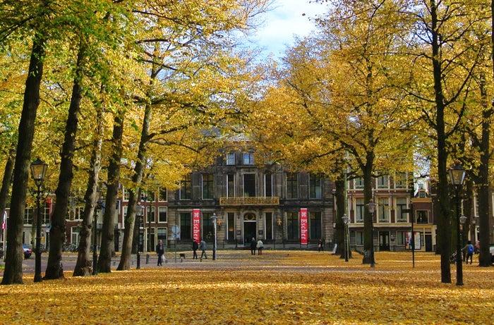 秋のエッシャー美術館前の並木道(c)Escher in The Palace, The Hague, Netherlands
