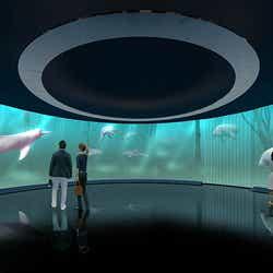 「円形スクリーンゾーン」イメージ/画像提供:アクア・ライブ・インベストメント