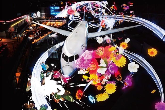 Fly with 787 Dreamliner/画像提供:中部国際空港