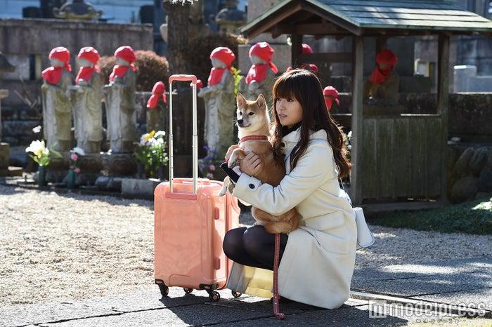 深田恭子/「ダメな私に恋してください」第8話より/画像提供:TBS