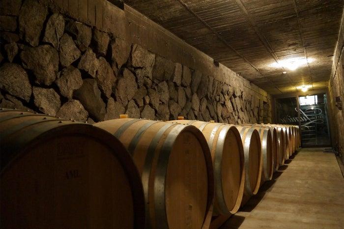 ほの暗く、ワイン香の漂う地下貯蔵庫内(提供画像)