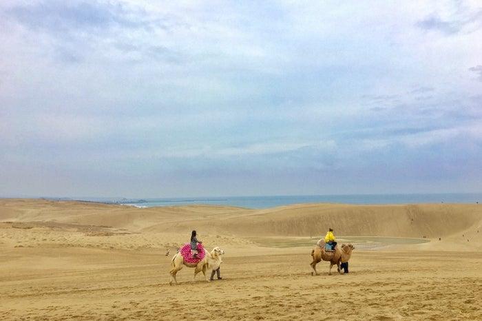 ラグダに乗って砂丘を散策(C)TBS