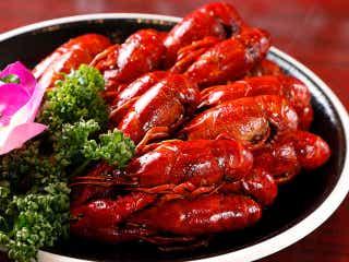ザリガニ料理専門店『蝦道(シャドウ)』が高田馬場に誕生!中国で爆発的人気のザリガニ料理の魅力とは?