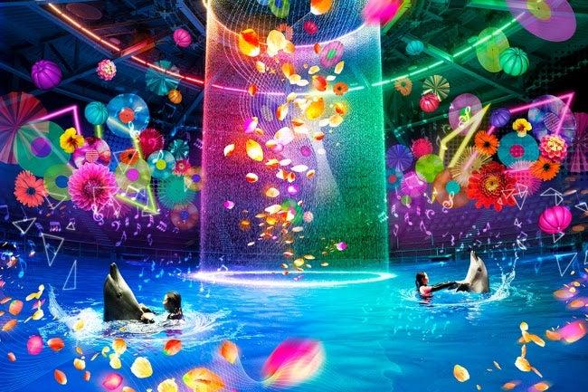 「Aqua Pop Party」(夜のドルフィンパフォーマンス)/画像提供:ネイキッド