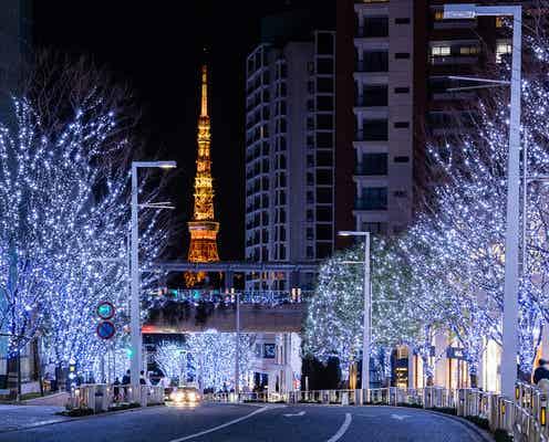 六本木ヒルズのクリスマス「Roppongi Hills Christmas 2020」寒色LED約70万灯の輝き