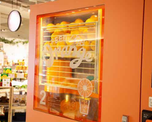 日本初上陸!生搾りオレンジジュースの自動販売機「フィードミーオレンジ」が登場