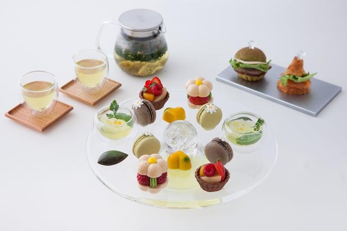アフタヌーンティーセット/ハーブティーとお茶を使った様々なペアリングスイーツのセット/画像提供:福寿園