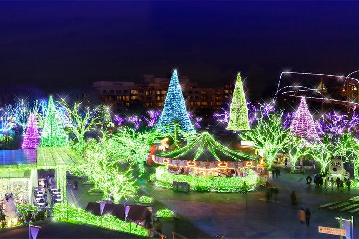 ジェード・ガーデンエリア/画像提供:よみうりランド