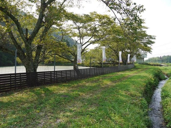 現存する銀の馬車道(神崎郡神河町吉冨畑川原)