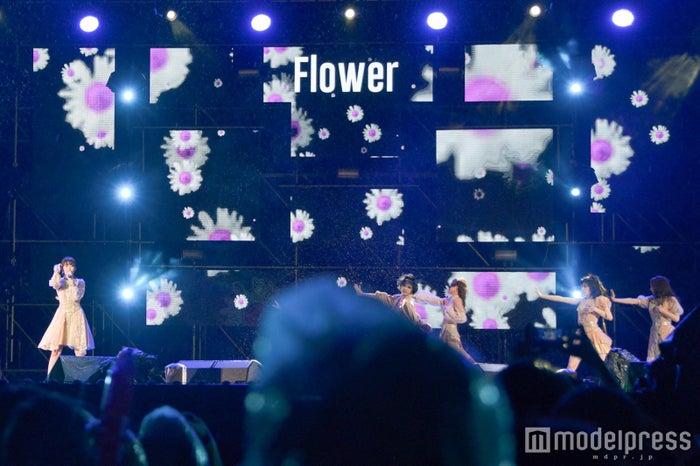 Flower (C)モデルプレス